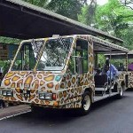 Singapore Zoo Tram.