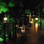 Inside Singapore's Night Safari, which is a major tourist destination in Singapore.