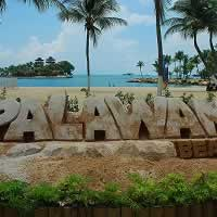 Free Animal and Bird Encounter/Show at Palawan Beach, Singapore