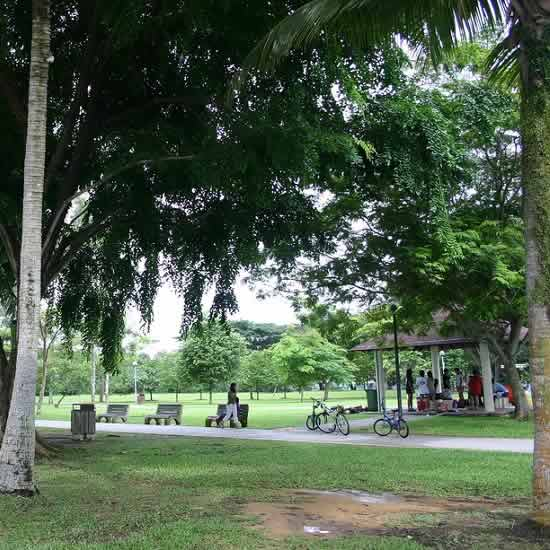 Pasir Ris Park Is A Large Beach Park in Singapore's North East